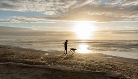 Spiaggia Levin Nuova Zelanda di Himutangi Fotografie Stock Libere da Diritti