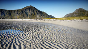 Spiaggia, linea costiera, Lofoten Fotografia Stock Libera da Diritti