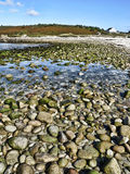 Spiaggia litoranea di HDR - st Agnese immagine stock