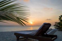 Spiaggia - Maldive Immagini Stock