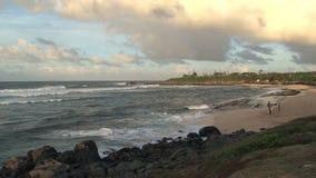 Spiaggia Maui, Hawai archivi video