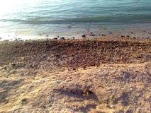 Spiaggia mauriziana (campione della cartolina) Immagine Stock Libera da Diritti