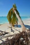 Spiaggia meravigliosa Fotografie Stock