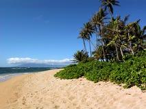 Spiaggia Molocai Hawai di Waialua Fotografia Stock