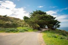 Spiaggia nazionale di Reyes del punto in California fotografia stock