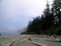 Spiaggia nebbiosa Fotografia Stock