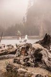 Spiaggia nebbiosa Immagine Stock Libera da Diritti