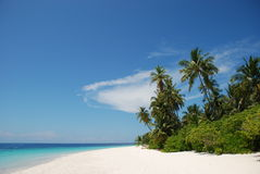 Spiaggia nei Maldives Fotografie Stock