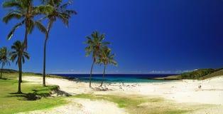Spiaggia nell'isola di pasqua Fotografie Stock
