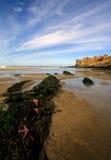 Spiaggia nell'Oregon del Nord Immagini Stock Libere da Diritti