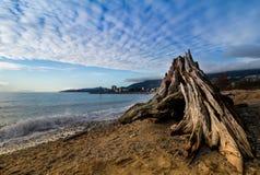 Spiaggia nella città Fotografia Stock Libera da Diritti