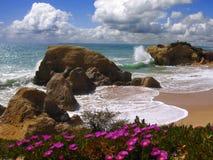 Spiaggia nella sorgente, Portogallo del Algarve Fotografia Stock Libera da Diritti
