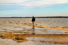 Spiaggia nella stagione di caduta al parco di Oka fotografia stock