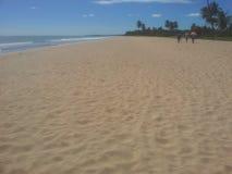 Spiaggia nello Sri Lanka Fotografie Stock Libere da Diritti