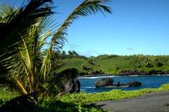 Spiaggia nera della sabbia su Kauai Fotografia Stock