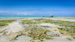 Spiaggia Nungwi di Zanzibar Immagini Stock