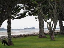 Spiaggia oscura di giorno Fotografie Stock