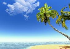 Spiaggia, palme e mare Immagine Stock Libera da Diritti