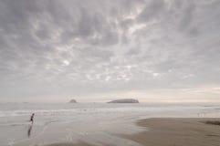 Spiaggia Perù di San Pedro Fotografie Stock