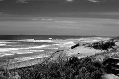 Spiaggia in Philip Island Immagini Stock Libere da Diritti