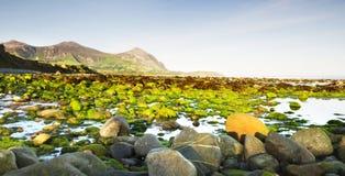 Spiaggia pietrosa dopo alba Fotografia Stock Libera da Diritti