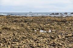Spiaggia pietrosa in Marino Ballena Parc, Costa Rica Fotografie Stock Libere da Diritti