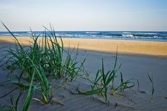 Spiaggia in Polonia Immagini Stock