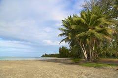 Spiaggia, Porto Rico Fotografie Stock