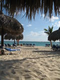 Spiaggia in Punta Cana Fotografie Stock