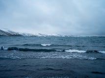 Spiaggia Reykjavik Fotografia Stock Libera da Diritti