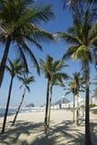 Spiaggia Rio de Janeiro Palm Trees di Copacabana fotografia stock
