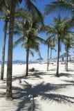 Spiaggia Rio de Janeiro Palm Trees di Copacabana immagini stock