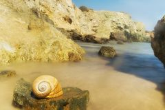 Spiaggia rocciosa di Lolantonis all'isola di Paros in Grecia con una conchiglia alla priorità alta Immagine Stock