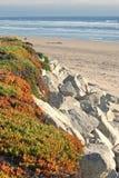 Spiaggia rocciosa e litorale della California centrale fotografie stock libere da diritti