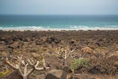 Spiaggia rocciosa a Lanzarote Immagini Stock Libere da Diritti
