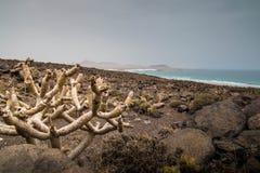 Spiaggia rocciosa a Lanzarote Fotografia Stock