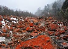 Spiaggia rocciosa rossa della fossa dello swallow della prefettura di Ganzi Immagini Stock Libere da Diritti