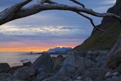 Spiaggia rocciosa su Lofoten Fotografia Stock Libera da Diritti