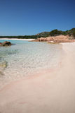 Spiaggia Rosa (Pink Beach) Stock Photos