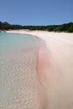 Spiaggia Rosa (rosa färgstranden) arkivbild
