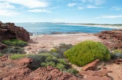 Spiaggia rossa di bluff Immagine Stock Libera da Diritti