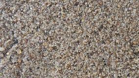 Spiaggia sabbiosa ad un aumento Immagine Stock Libera da Diritti