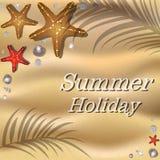 Spiaggia sabbiosa con le coperture, le stelle marine e l'ombra delle palme Immagini Stock