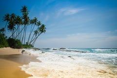 Spiaggia sabbiosa con le palme nello Sri Lanka Fotografia Stock Libera da Diritti