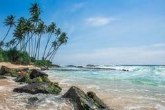 Spiaggia sabbiosa con le palme nello Sri Lanka Immagine Stock
