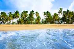 Spiaggia sabbiosa del mare Fotografia Stock Libera da Diritti