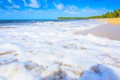 Spiaggia sabbiosa del mare Fotografie Stock Libere da Diritti