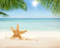 Spiaggia sabbiosa di estate con l'oceano della sfuocatura su fondo Fotografie Stock