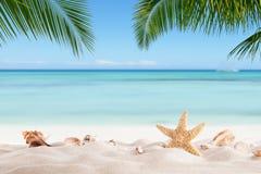 Spiaggia sabbiosa di estate con l'oceano della sfuocatura su fondo Fotografie Stock Libere da Diritti