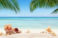 Spiaggia sabbiosa di estate con l'oceano della sfuocatura su fondo Immagine Stock Libera da Diritti